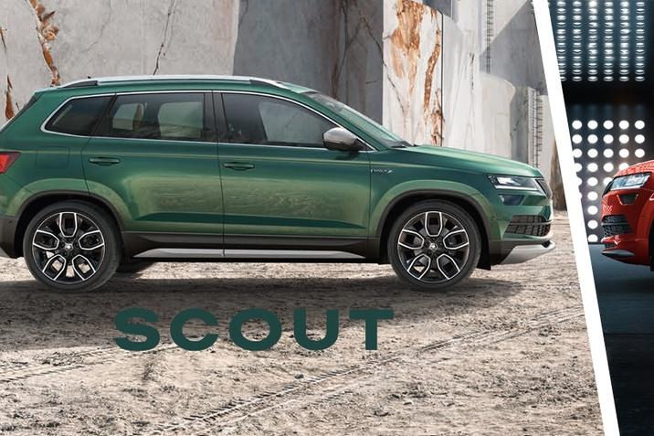 Scout - Sportline